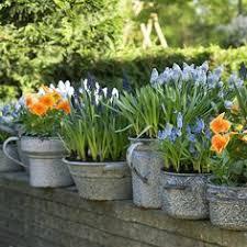 HOME DZINE Garden | Unique Flower Pot Or Container Ideas