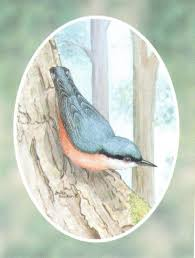 Folding Gift Tags Folded Gift Tag Nuthatch