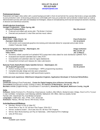 Professional Video Editor Resume