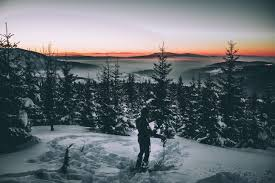 winter trees wallpaper hd. Delighful Wallpaper 5184x3456 Wallpaper Skier Snow Winter Trees For Winter Trees Hd P