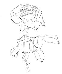 Small Picture Rose coloring page Free Printable Coloring Pages