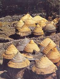 architecture without architects. upper volta large round house of a peulh family with woven straw walls and double roof architecture without architects