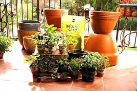 apartment balcony herb garden herb garden spacing small balcony plant ideas what to grow in a