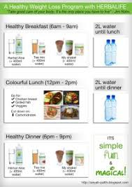 Herbalife Meal Plan My Postpartum Weight Loss Program I Lost 15kg Blog Aisyah