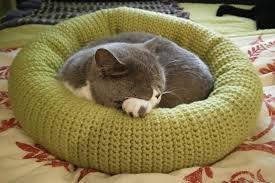 Crochet Cat Bed Pattern Free