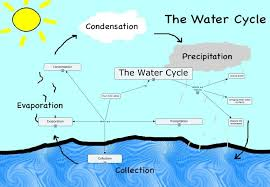 steps water cycle steps printable water cycle water cycle steps water cycle steps printable water cycle water cycle water cycle process the water cycle process steps and many others about the water cycle