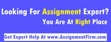 assignment expert online assignment help assignment expert