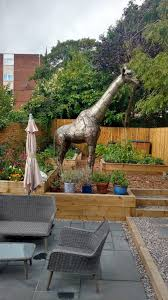 my 11ft garden giraffe
