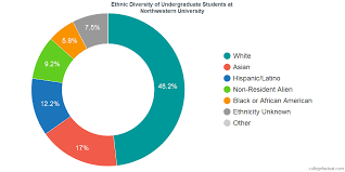 Northwestern Chart Northwestern University Diversity Racial Demographics