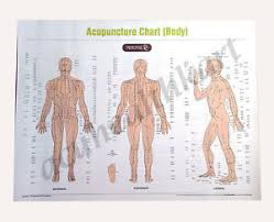 Details About Acupuncture Sujok Acupressure Reflexology Spinal Cupping Charts Set Of 10
