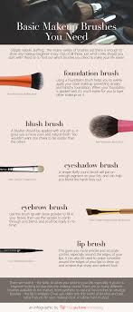 basic makeup brushes infographic