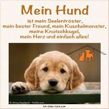 Pin Von Alia Mayer Auf Truth Sprüche Tiere Hunde Und Ich Liebe Hunde