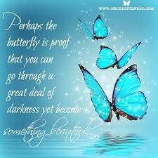 Butterfly Beauty Quotes Best Of 24 Butterfly Quotes On Pinterest Butterfly Sayings Positive 24