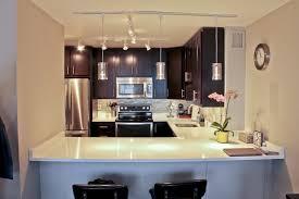 Condo Kitchen Remodel Interior Interesting Decorating