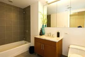 Oval Bathroom Mirrors Amazon Tilt Canada