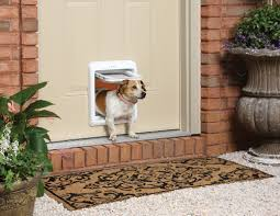 paw pet doors perth paw pet doors perth