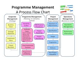 Programme Management Flow Chart Process Flow Diagram