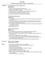 Security Professional Resume Samples Velvet Jobs