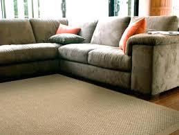 rugs direct promo code sisal rugs direct sisal rugs direct s sisal rugs direct promo code