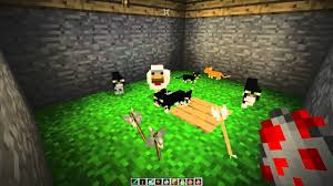 tame baby ocelot minecraft. Delighful Tame YouTube Premium Throughout Tame Baby Ocelot Minecraft L