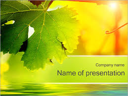 Autumn Leaves Powerpoint Template Backgrounds Google Slides Id
