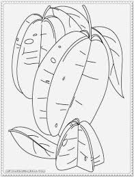 printable star printable star fruit fruit coloring pages for kids coloring7 com