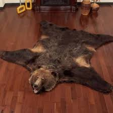 Grizzly Bear Rugs For Ideas
