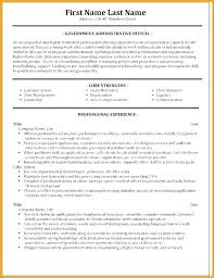 Resume Forms Online Gorgeous Best Format For Resume Official Resume Template Top Templates Best