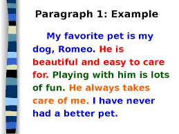 essay about my favorite pet dog