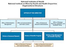 Nih Organizational Chart Organizational Structure