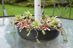 patio table flower pots. succulent patio table planter flower pots w