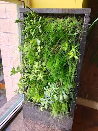 informal green wall indoors. It Definitely Filled Out The Empty Spaces. Maybe Might Look Good On A Larger Wall. Here It\u0027s Too Up Close Where You See Each Strand Of Grass. Informal Green Wall Indoors