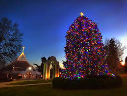 Cbs Christmas Tree Lighting Date Change Campus Merry And Bright With Annual Tree