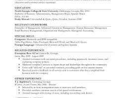 Download Work Experience Resume