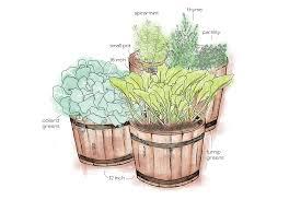 Container Gardening Tips Container Gardening Best Tips U0026 Tricks Container Garden Plans