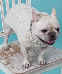 Free Knitted Dog Sweater Patterns Simple Free Knitting Pattern For Large Dog Sweater Google Search