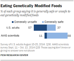 eating genetically modified foods pew research center eating genetically modified foods