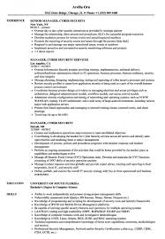 Download 19 Cyber Security Resume Recommended Www Mhwaves Com