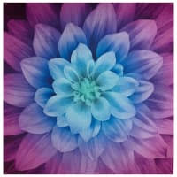 <b>Floral</b> & <b>Flower</b> Print <b>Fabric</b> - <b>Floral Fabric</b> by the Yard | <b>Fabric</b>.com
