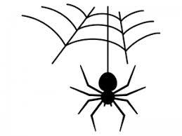 蜘蛛のイラスト イラスト無料かわいいテンプレート