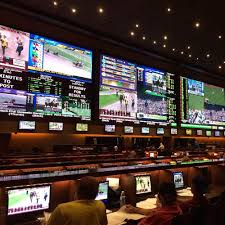 Image result for Sport Betting Tutorial