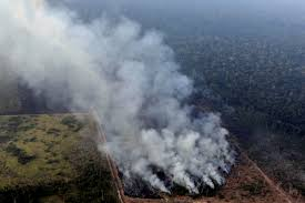 Image result for amazons brazil in fire