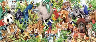 all animals in the world pictures. Interesting The 41017 Is World Animal Day Learn More U2013 Read On To All Animals In The Pictures 1