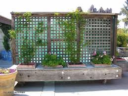 Picture of Planter Fence Ideas Movable Privacy Fence On Casters With Built  In Planters Could