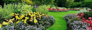 garden centers in ct. garden centers near me lofty idea lawn and center imposing ideas shops . in ct