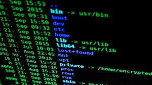 Segurança digital e de dados pessoais: o guia completo e atualizado