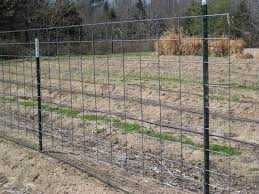 2x4 welded wire fence. Brilliant Wire And 2x4 Welded Wire Fencing The Panels Are For Strength Rigidity  The Is Because A Young Pig Can Fit Through Holes In Panels To Welded Wire Fence E