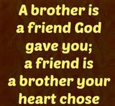Quotes For Brothers Amazing 48 Brother Quotes Sibling Quotes For Your Cute Brother Fresh