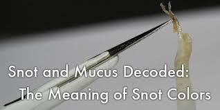 Snot and Mucus Decoded: The Meaning of Snot Colors | HealDove
