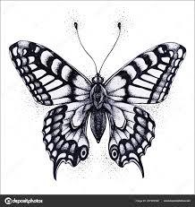 Motýl Ilustrace Vektor Tetování Motýla Symbol Duše Nesmrtelnost